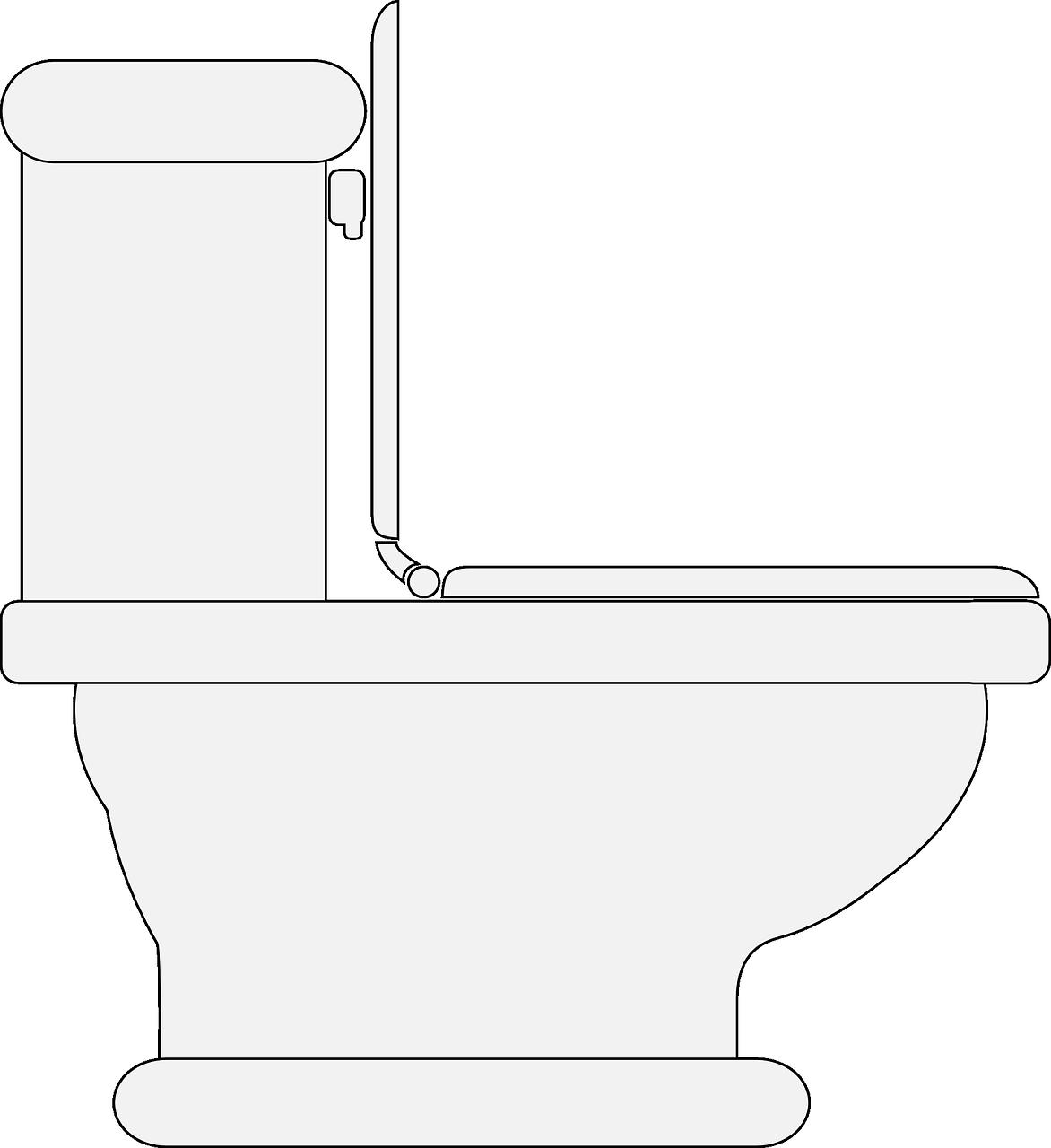 无水生态厕所